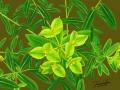 緑色 花 淳美