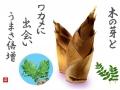 筍-木の芽-ワカメ-手紙.jpg