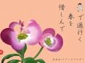 18-4花水木-手紙_edited-1