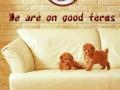 good_terms