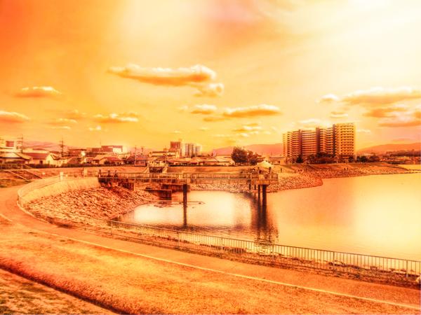 狭山池 2012-03-19