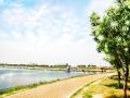 狭山池:初夏 2012-05-26